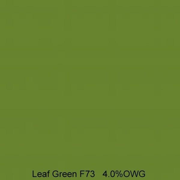 PRO Sabracron F Reactive Dye | F73 Leaf Green - 8 oz